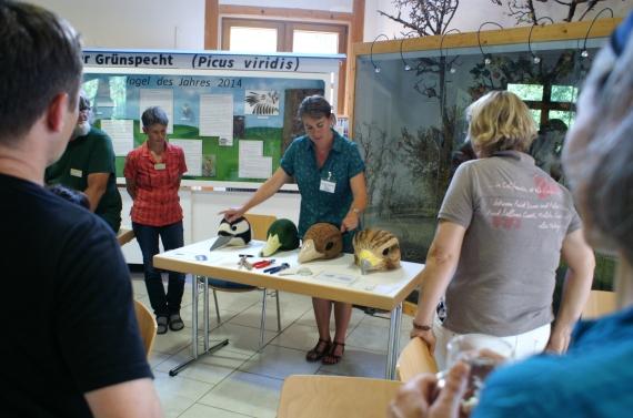 Workshop-Artenvielfalt - Foto: Sabine Ratzel